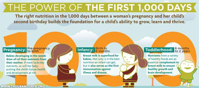 Perkembangan Otak Bayi pada 1.000 Hari Pertama