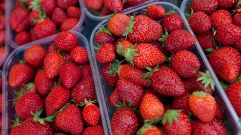 Stroberi Mengandung Pestisida