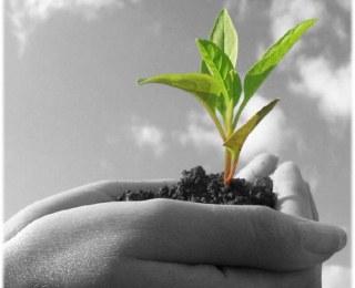 Pengertian Kesehatan Lingkungan Menurut Berbagai Sudut Pandang