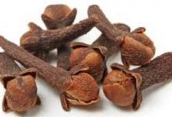 Obat Herbal Tradisional untuk Sakit Pinggang bagian Belakang