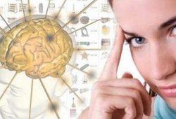 Paket Latihan Untuk Otak Anda