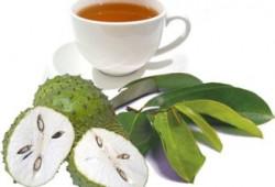 Obat Tradisional dan Alami untuk Sakit Ginjal : Daun Sirsak dan Baking Soda