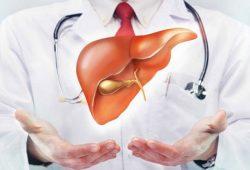Studi: Kasus Penyakit Hati Berlemak Makin Meningkat