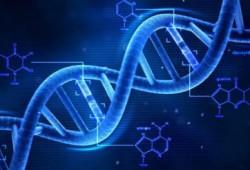 Apakah Gen memiliki Andil Besar dalam mempengaruhi kesehatan tubuh Anda?