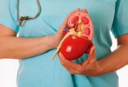 Adakah Pengobatan Medis Alternatif untuk Penyakit Batu Ginjal?