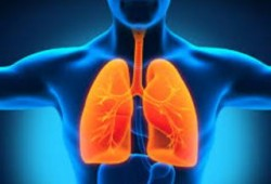 Penyebab Paru-paru Basah