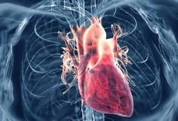 Penyakit Rematik Jantung atau RHD (Rheumatic Heart Disease)