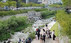 sungai-lingkungan-sehat