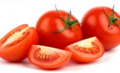 tomat-buah