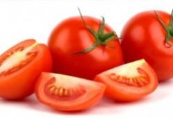 Khasiat Buah Tomat Obat Berbagai Penyakit