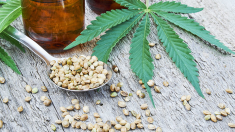 Cannabidiol (CBD) - www.health.harvard.edu