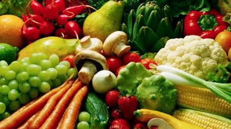 Makanan Nabati - www.konfrontasi.com
