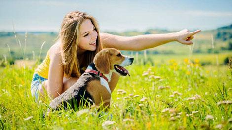 Pelihara Anjing - www.genmuda.com