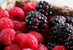 10 'Makanan Super' untuk Diet Sehat