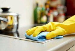Awas, Lap/Serbet Dapur Anda Menyimpan Kuman & Bakteri