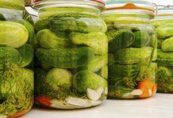 Makanan Fermentasi Alami Baik untuk Kesehatan Usus