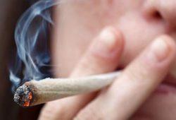 Bahaya Merokok Ganja untuk Ibu Hamil dan Jabang Bayi