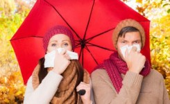 Penyakit Musim pancaroba