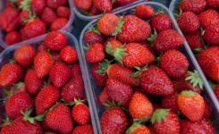Stroberi-Mengandung-Pestisi