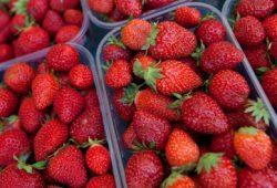 Sekali Lagi, Stroberi Mengandung Pestisida Terbanyak