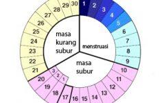 circle_month