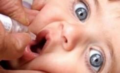 polio1-480×238