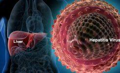 virushepatitis-liver